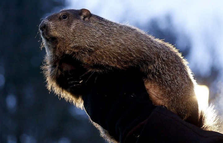 Groundhog day in 2021