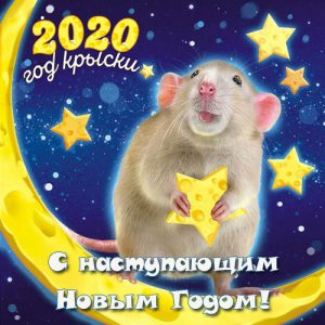 New year's greetings to 2021