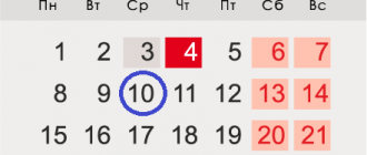 Accountant's day in 2021: what date and date