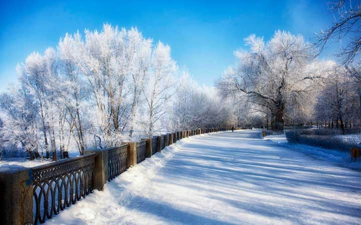 What will be the winter in Samara in 2021-2022   weather forecast