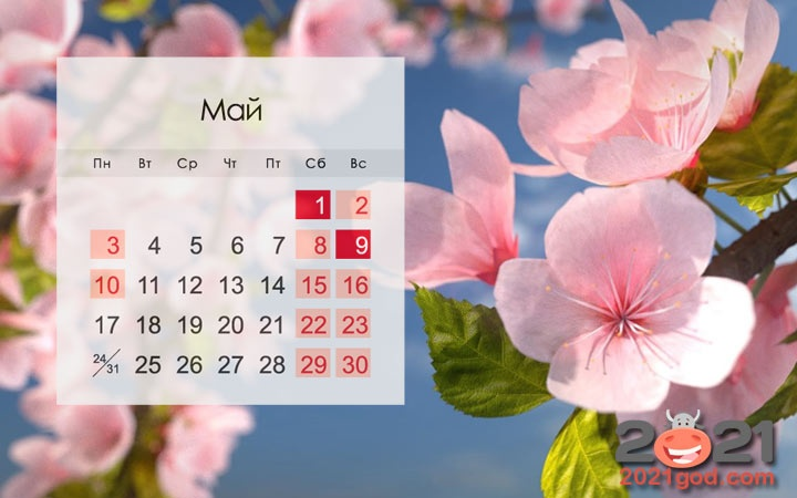 May 2021 in USA: calendar, holidays, weekends, how to relax