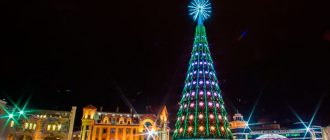 New year 2021 in Tyumen   prices, new year's eve, where to meet