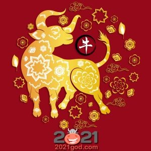 New year's pictures with the symbol of 2021 with a bull | for the New year