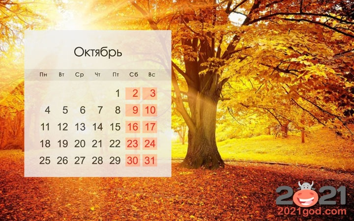 October 2021 in USA: calendar, holidays, weekends, how to relax