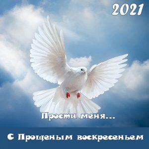 Congratulations on the forgiven Sunday in 2021: poems, postcards, SMS