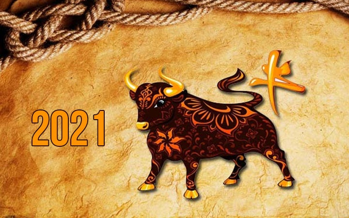 Riddles for the new 2021 year of the Bull with answers | funny
